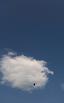 こちらは雲がかかり、鳥がおります。