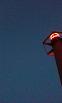 ぼんやりと浮かぶ灯台の明かりです。